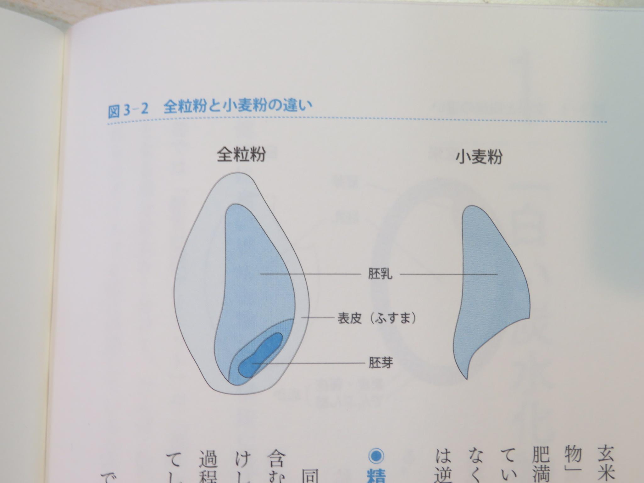 https://www.elashy-mise.jp/IMG_6577.JPG