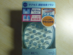 P1020789.JPG