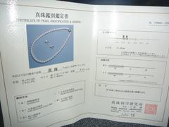 P1020826.JPG