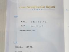 IMG_0238b.JPG